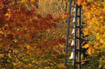 The bells at Assumption College during the fall.